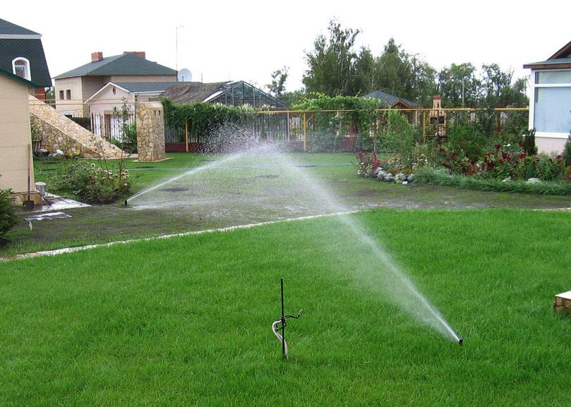 Автоматическая дождевидная система полива остается самым распространенным методом защиты растений от жары
