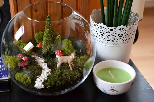 Как сделать флорариум с кактусами
