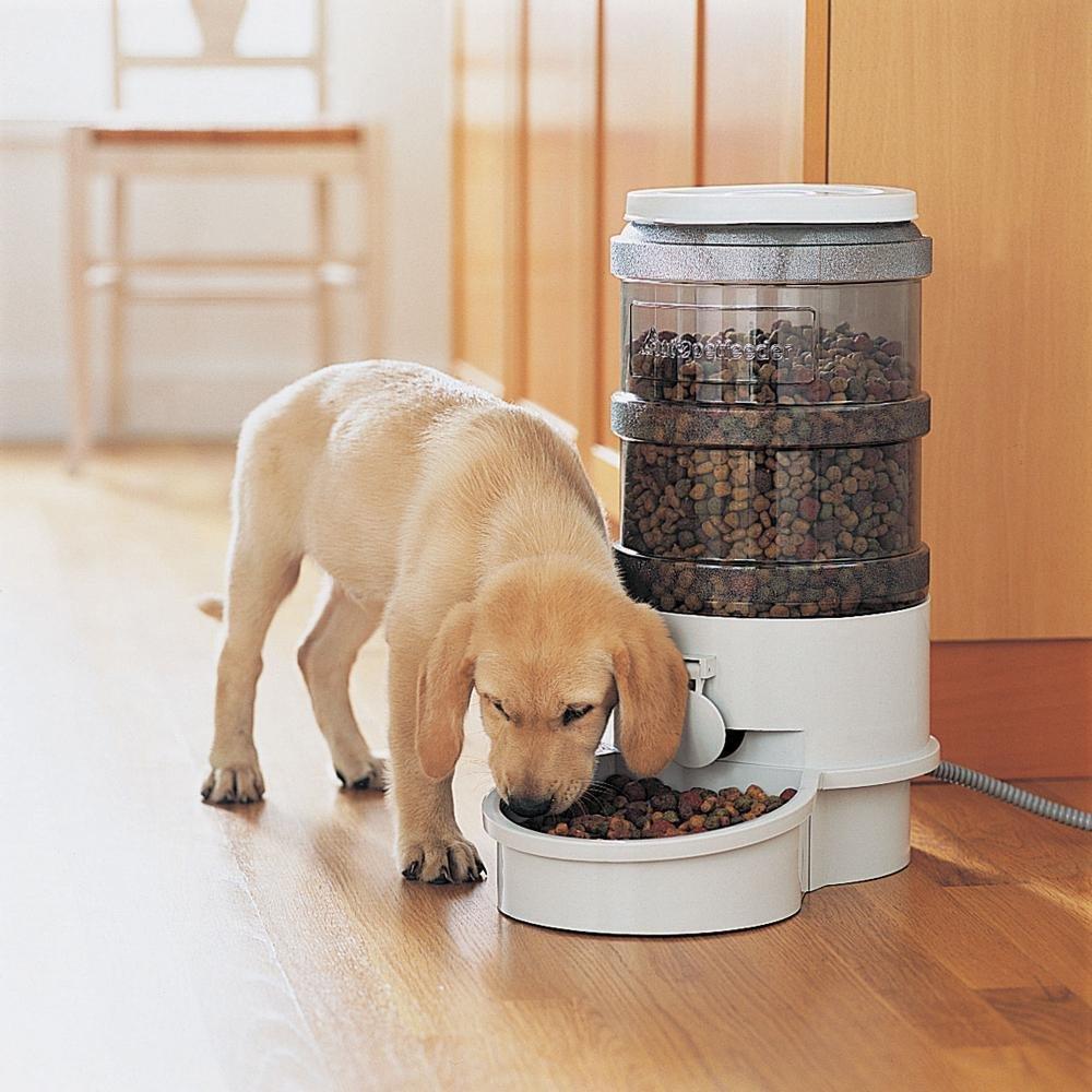 Автоматическая кормушка для собак своими руками с таймером