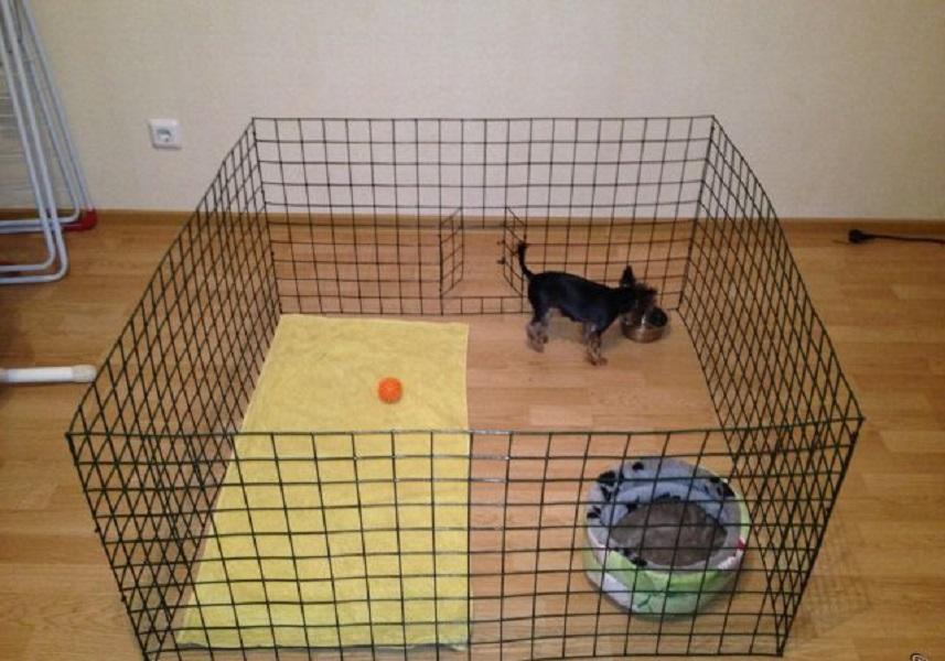 Место для щенков своими руками в квартире