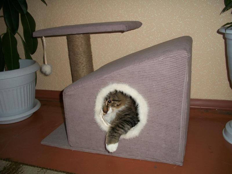 Как сделать из материала кота
