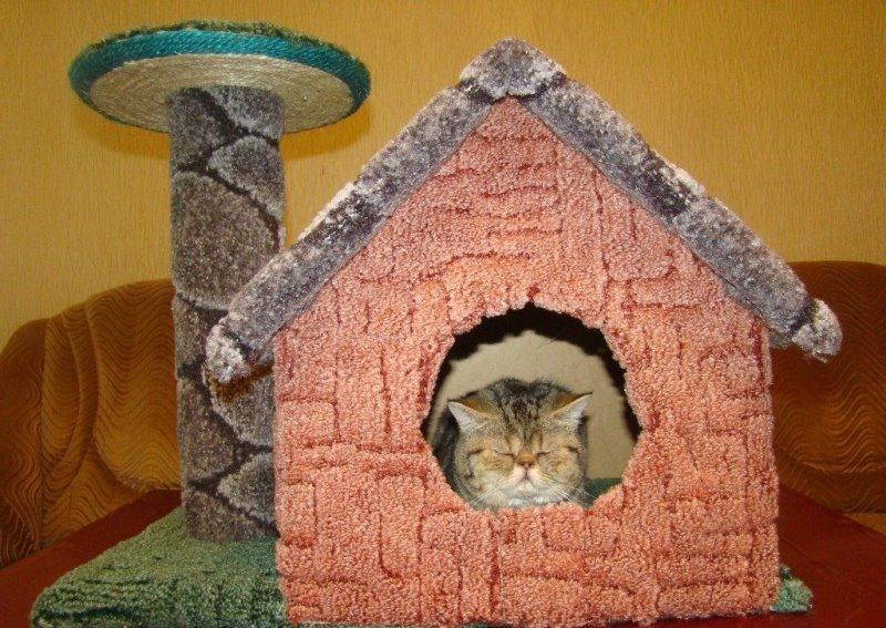 Как сделать домик для кошек самому