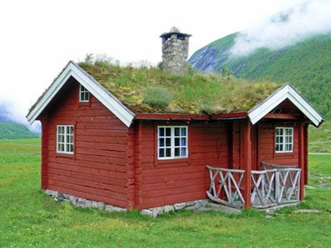 Каждый сам может определиться, что актуально для крыши конкретного дома