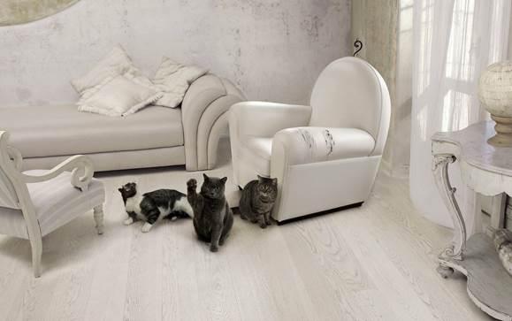Как отучить кошку царапать мебель и обои: 7 способов