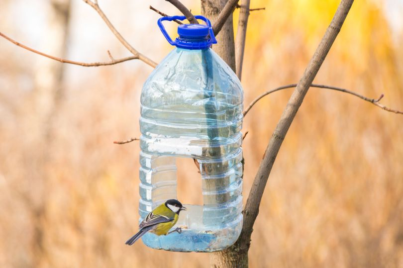 1-16 Кормушка для птиц из пластиковой бутылки